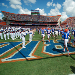 photo of the Florida Gators football field.